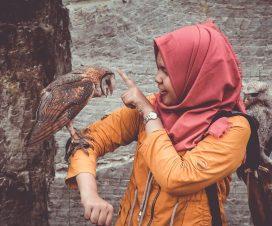 hayvan uluması, hayvan uluması ve islam